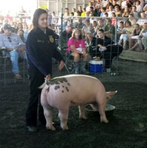 Delilah Willis show pig at county fair