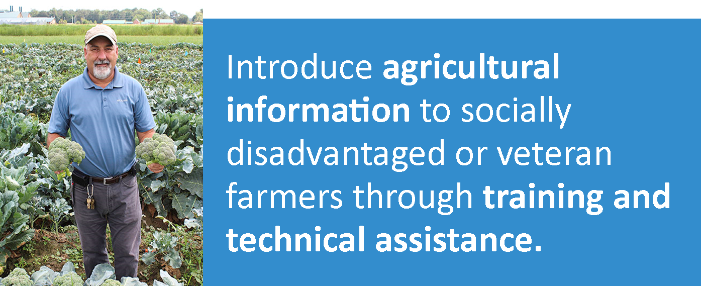 Broccoli farmer: Introduce agricultural information to socially disadvantaged or veteran farmers through training and technical assistance.