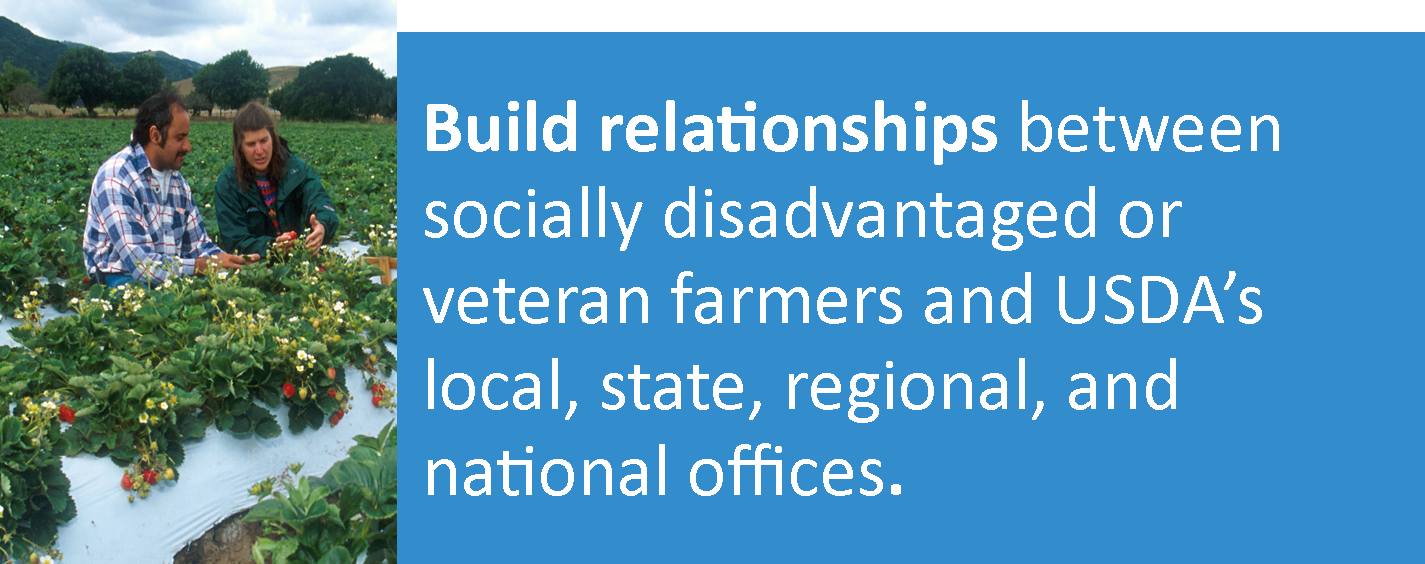 People in strawberry field: Build relationships between socially disadvantaged or veteran farmers and USDA's local, state, regional, and national offices.